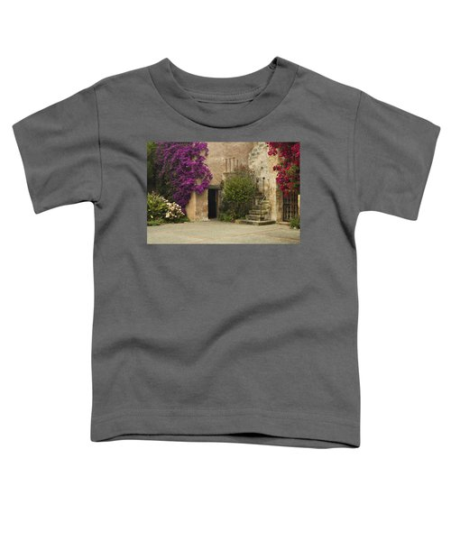 Mission Stairs Toddler T-Shirt