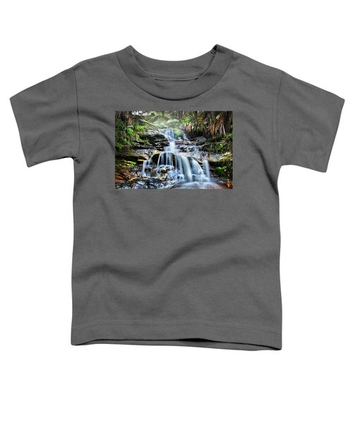 Misty Falls Toddler T-Shirt