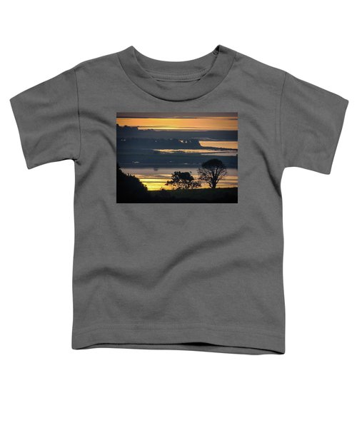 Toddler T-Shirt featuring the photograph Misty Irish Morning On The Shannon by James Truett