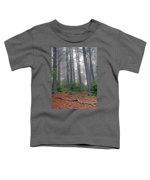 Misty Morning In An Algonquin Forest Toddler T-Shirt
