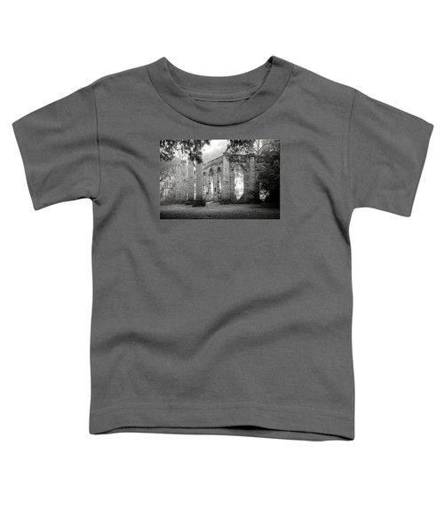 Misty Ruins Toddler T-Shirt