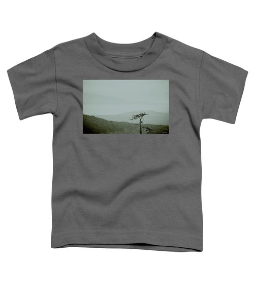 Misty View Toddler T-Shirt