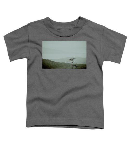 Misty View Toddler T-Shirt