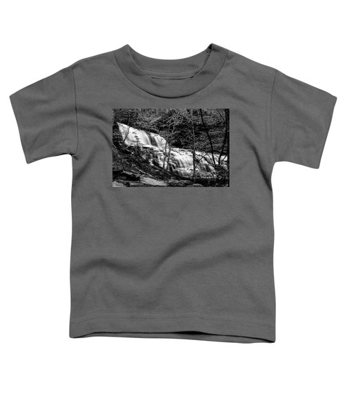 Mohawk Falls - 8617 Toddler T-Shirt