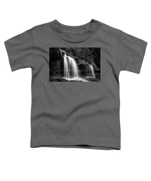 Mohawk Falls II Toddler T-Shirt