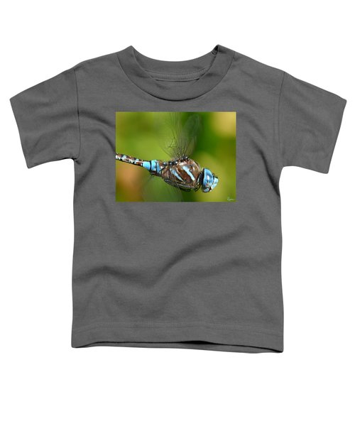 Moment In Time Toddler T-Shirt
