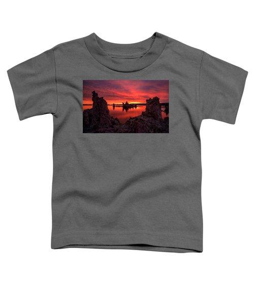 Mono Blaze Toddler T-Shirt