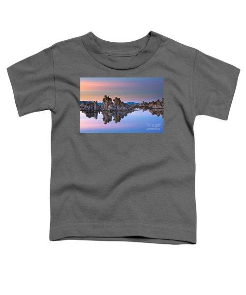 Mono Lake #2 Toddler T-Shirt