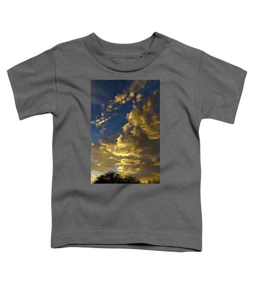 Monsoon Warmth Toddler T-Shirt