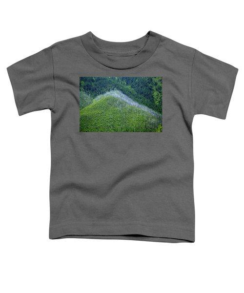 Montana Mountain Vista #4 Toddler T-Shirt