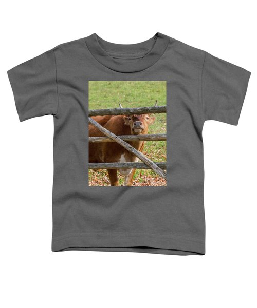 Toddler T-Shirt featuring the photograph Moo by Bill Wakeley