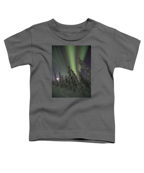 Moon On The Hill Toddler T-Shirt