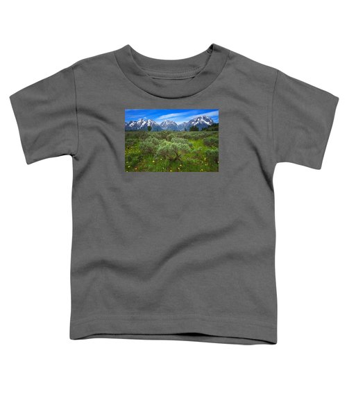 Moran Meadows Toddler T-Shirt