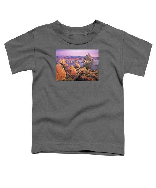 Morning Colors At Lake Pyramid Toddler T-Shirt
