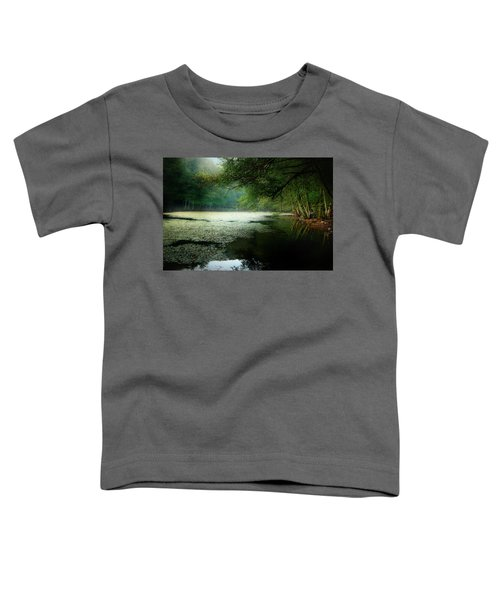 Morning Fog Toddler T-Shirt