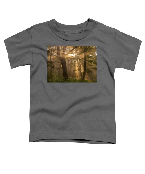 Morning God Rays Toddler T-Shirt