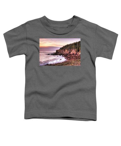 Morning In Acadia Toddler T-Shirt