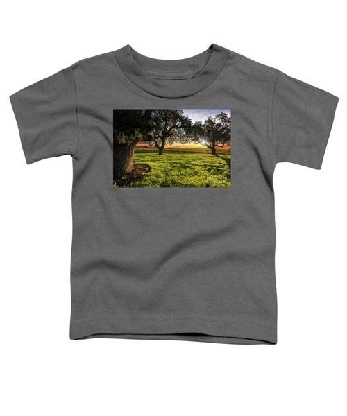 Morning In Wine Country Toddler T-Shirt