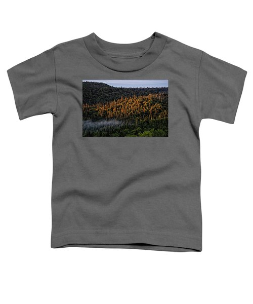 Toddler T-Shirt featuring the photograph Morning Kiss by Doug Gibbons