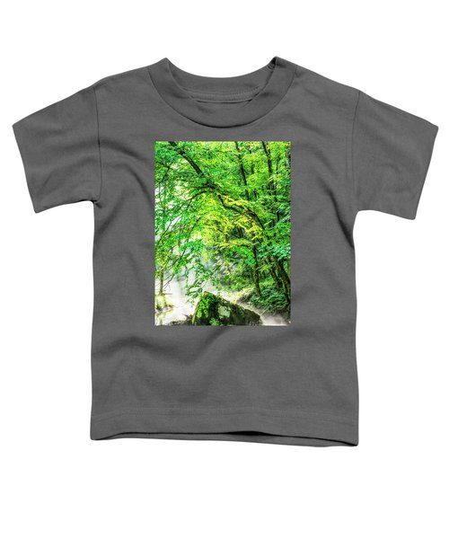 Morning Light In The Forest Toddler T-Shirt