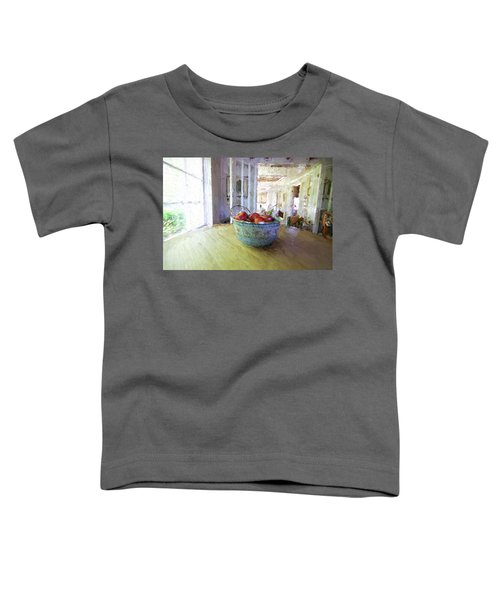 Morning On The Farm Toddler T-Shirt