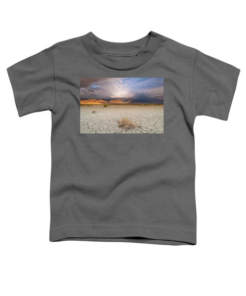 Morning Rainbow Toddler T-Shirt