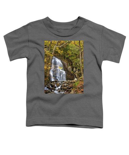 Moss Glen Falls Toddler T-Shirt