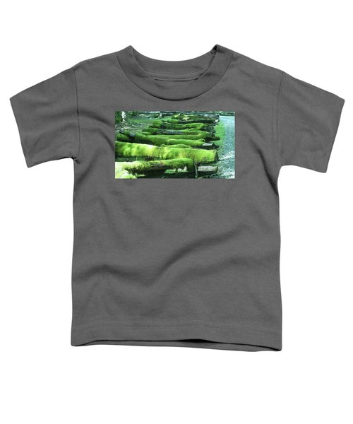 Mossy Fence Toddler T-Shirt