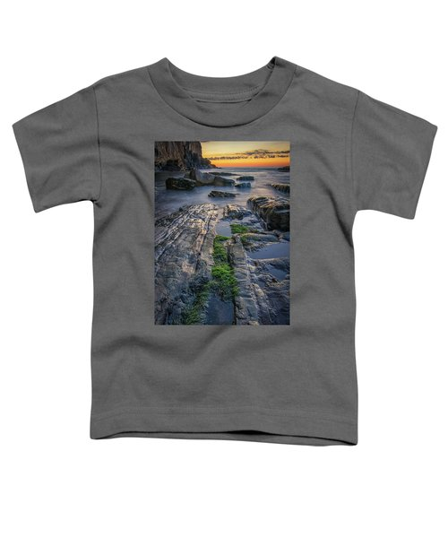 Mossy Rocks At Bald Head Cliff  Toddler T-Shirt