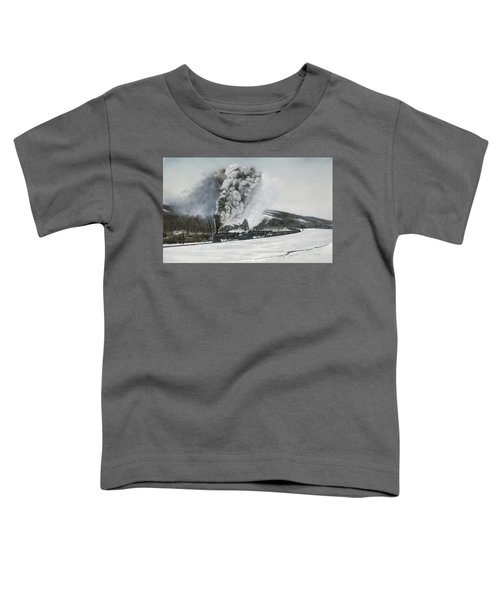 Mount Carmel Eruption Toddler T-Shirt