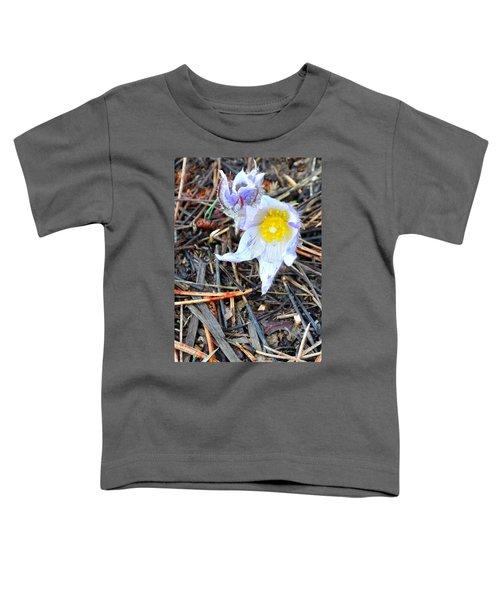 Mount Margaret Spring 14344 Toddler T-Shirt