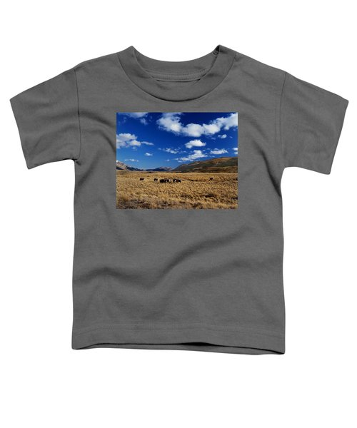 Mount Nicholas Station New Zealand Toddler T-Shirt