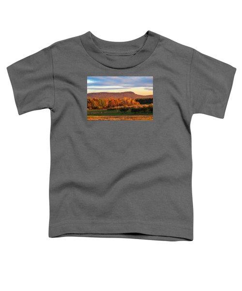 Mount Tom Foliage View Toddler T-Shirt