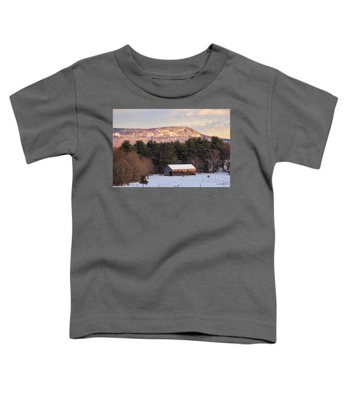 Mount Tom View From Southampton Toddler T-Shirt
