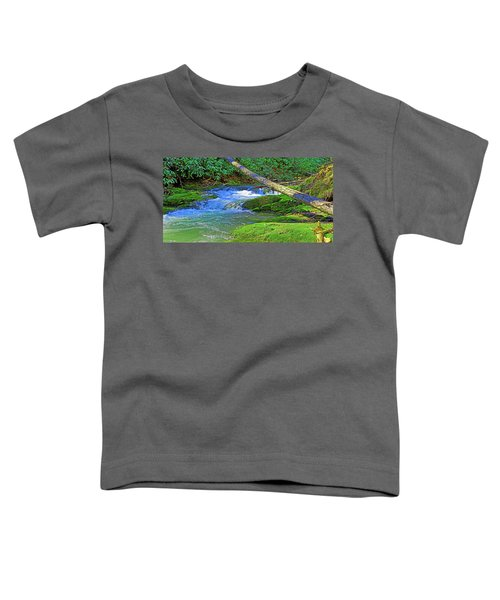 Mountain Appalachian Stream Toddler T-Shirt