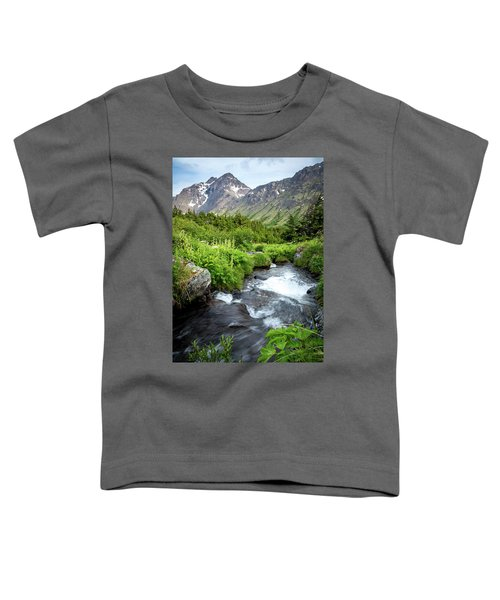Mountain Creek In Early Summer Toddler T-Shirt