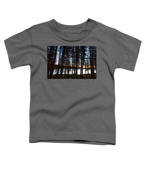 Toddler T-Shirt featuring the photograph Mountain Forest Lake by James BO Insogna