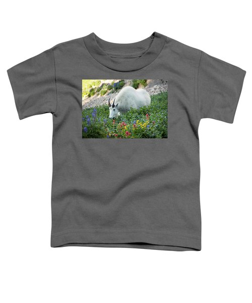 Mountain Goat On Timp Toddler T-Shirt
