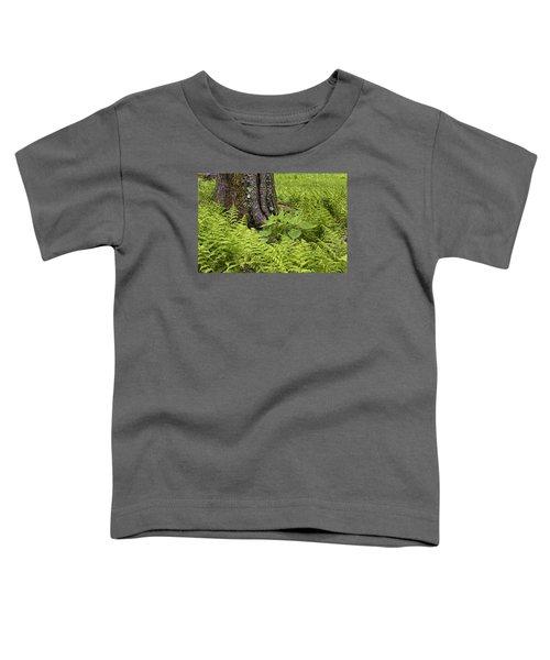 Mountain Green Ferns Toddler T-Shirt
