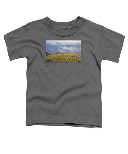 Mountain High Toddler T-Shirt