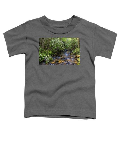 Mountain Laurels Light Up Panther Creek Toddler T-Shirt