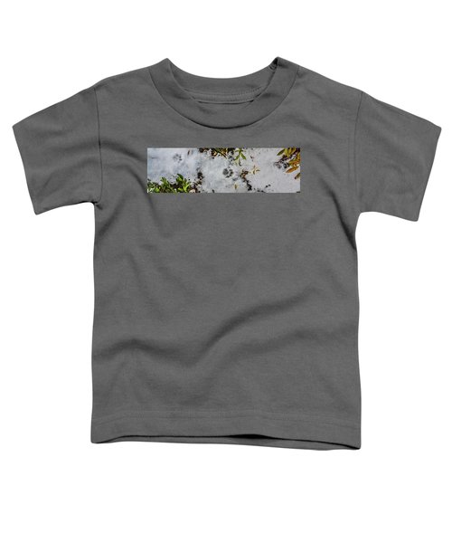 Mountain Lion Tracks In Snow Toddler T-Shirt