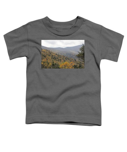Mountain Side Long View Toddler T-Shirt