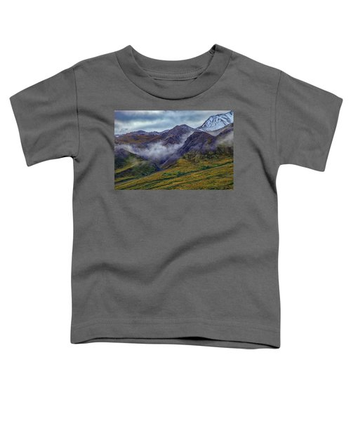 Mountains In The Mist Toddler T-Shirt
