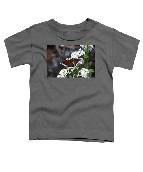Mourning Cloak Toddler T-Shirt
