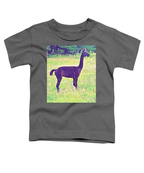 Mr Alpaca Toddler T-Shirt