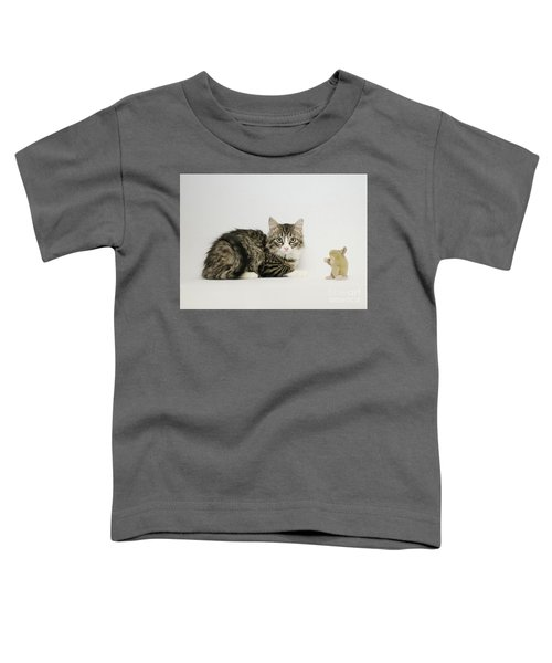 Ms Alexia And Mouse Toddler T-Shirt