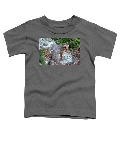 Ms Pin Toddler T-Shirt