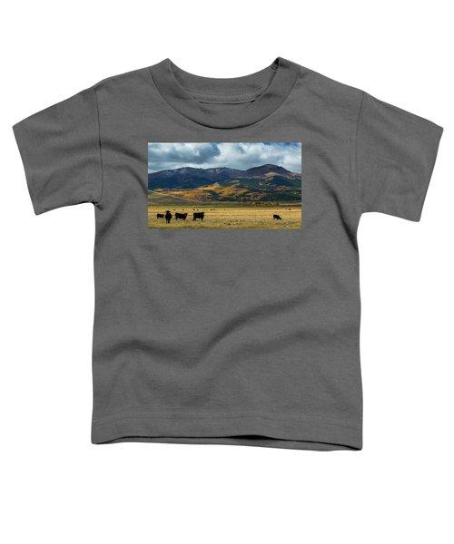 Mt. Elbert Toddler T-Shirt