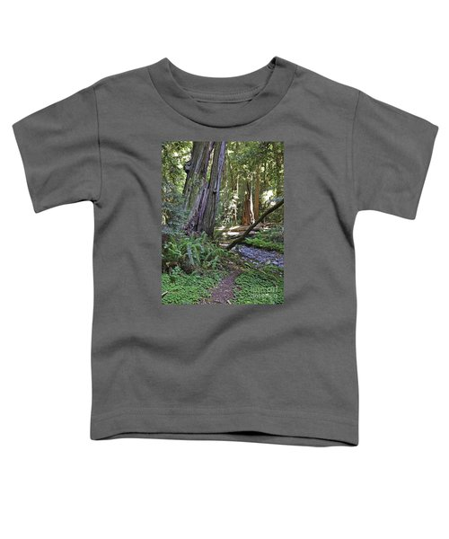 Muir Woods Beauty Toddler T-Shirt